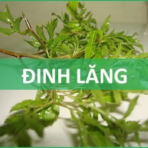 dinh-lang